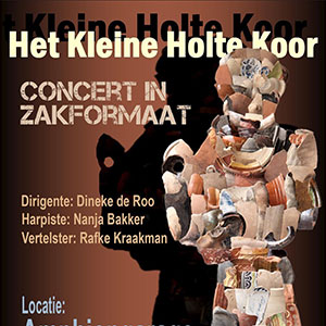 """Concert in """"zakformaat"""""""